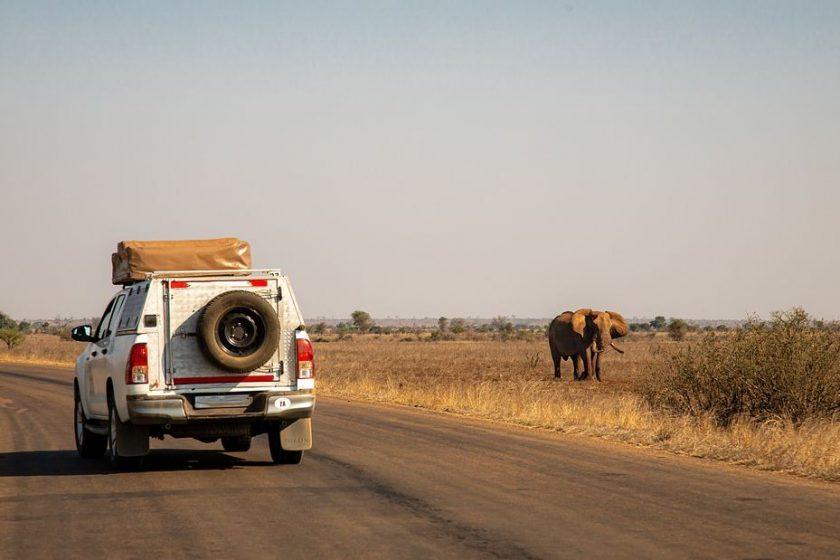 Passer des vacances authentiques dans les terres sauvages kenyanes